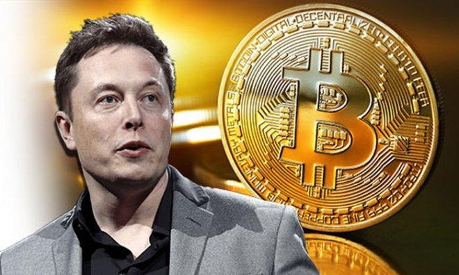L'entrepreneur et milliardaire Elon Musk révèle combien de Bitcoins il possède.