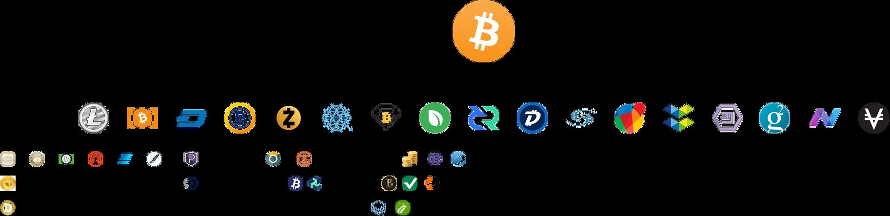 Le Bitcoin reste intact malgré plusieurs Forks qui ont vécu depuis sa création