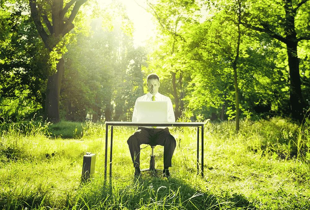 société écoresponsable business vert